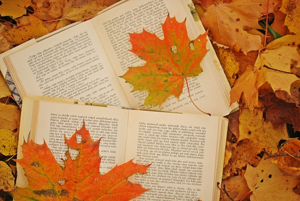 photo-autumn-leaves-maple-books-favim-com-486374